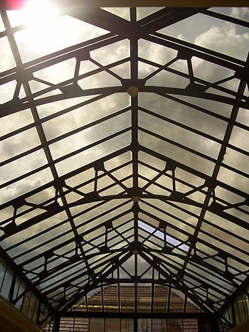 Gainesville: : Skylight over the Spanish Court...