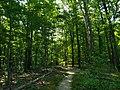 Thompson Park Trailhead.jpg