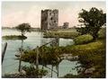 Threave Castle, Castle Douglas, Scotland-LCCN2001705953.tif