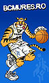 Tigris mures.jpg