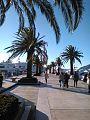 Tivat - Porto Montenegro.jpg