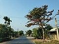Tl 29' long Binh Dien, Cho gao, Tien Giang, Vietnam - panoramio.jpg