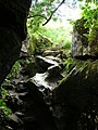 Tom Taylor's Cave, How Stean Gorge - geograph.org.uk - 445006.jpg