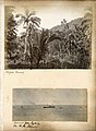 Tongan scenery and Homeward from Sydney per M.M. steamer (8975805992).jpg