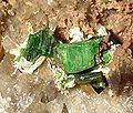 Torbernite-Quartz-131125.jpg