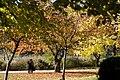 Toronto - High Park (6569681133).jpg