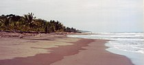 Tortuguero caribbean coast.jpg