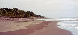 Beach in Tortuguero National Park, Limón