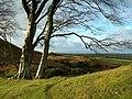 Towards Craigdow Farm - geograph.org.uk - 287072.jpg