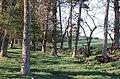 Towards Kilbackmont - geograph.org.uk - 414149.jpg