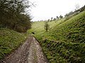 Track in the bottom of Cowlam Well Dale - geograph.org.uk - 1226776.jpg