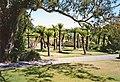 Tree ferns, Logan Botanic Gardens, Mull of Galloway - geograph.org.uk - 878266.jpg