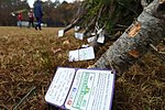Trees for Troops, The SPIRIT of giving 161205-F-GX122-033.jpg