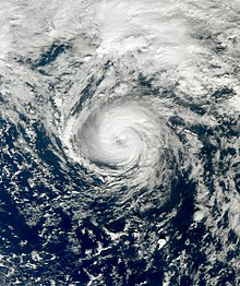 Satellite image of a small, compact and circular tropical storm, with a cloud-filled eye feature at its center