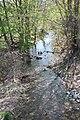 Turkey Run looking downstream.jpg