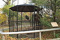 Turkey Vulture enclosure, Beardsley Zoo, 2009-11-06.jpg