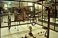 Tutankhamun KV62 Chariot (1999).jpg