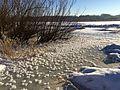 Užšalęs Nemunas - panoramio.jpg