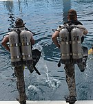 USAF Combat Diver-in training-enter the water.jpg