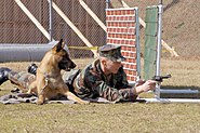 US Navy 030212-N-8937A-004 Master-at-Arms 2nd Class Donald Reinhart, assigned to Fleet Activities Sasebo Security Department, fires off blank rounds of ammunition during a training exercise with his military working dog, Goof,
