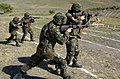 US Navy 070424-N-6824E-123 Shooters execute two-man team tactics while live firing at stationary targets during Quick Shot 2007.jpg