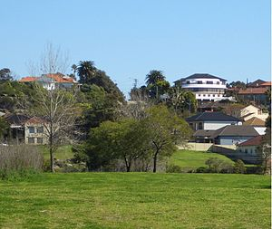 Undercliffe, New South Wales - Undercliffe, view from Waterworth Park
