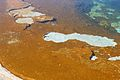 Upper Geyser Basin Yellowstone 31.JPG