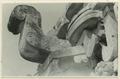 Utgrävningar i Teotihuacan (1932) - SMVK - 0307.j.0068.tif