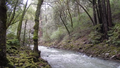 Uvas creek near Sveadal, California, Jan 2017.png
