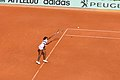 V Williams - Roland-Garros 2012-IMG 3717.jpg