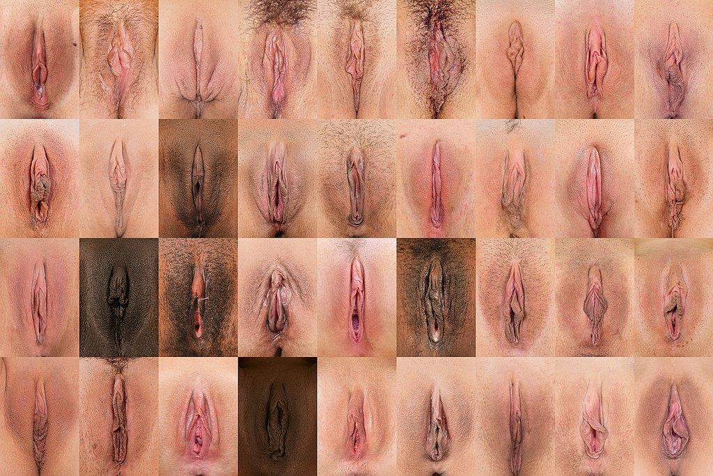 beautiful women with awsome vaginas