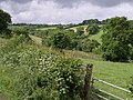 Valley below Beamsworthy - geograph.org.uk - 468319.jpg