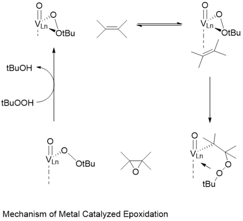 Vanadium Catalytic Pathway.png