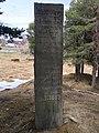 Vangfeltet, Vang Burial Site, Norway's largest burial field, iron-Viking age (gravfelt fra jernalderen), Oppdal, Trøndelag. Memorial (minnestein) 863-1889. 2019-04-25 788.jpg