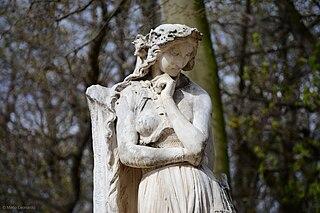 female shaman in Norse mythology