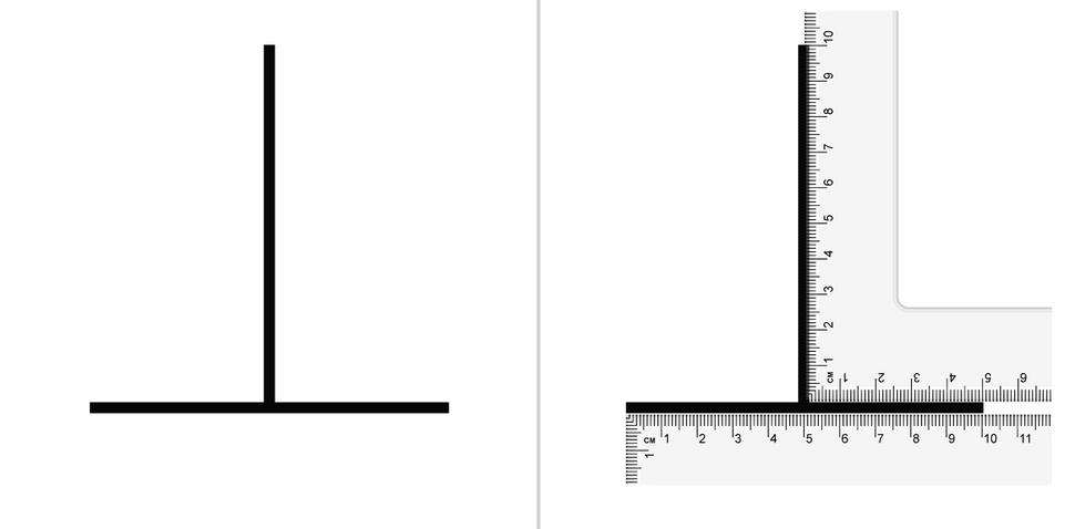 Vertical–horizontal illusion