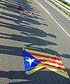 Via Catalana a Sant Carles de la Ràpita (Tram 32).jpg