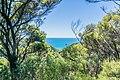 View of Tasman Bay 01.jpg