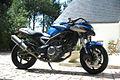 Vraptor-650-nicolas-vergnes-wolfhurt.jpg