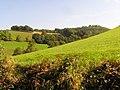 Vue sur l'altenberg - panoramio.jpg