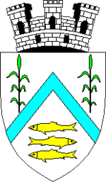 Vylkove Romanian coat of arms.png