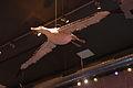 WLANL - thedogg - Albatros.jpg