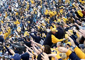 West Virginia Mountaineers Football Wikipedia