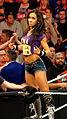 WWE Raw 2015-03-30 19-33-05 ILCE-6000 3269 DxO (18235381913).jpg