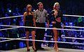WWE Smackdown Wrestlemania Revenge (8660957171).jpg