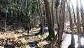 WWT Knapp Reserve (31980983391).jpg