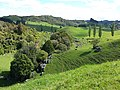 Waikato hills 3.jpg