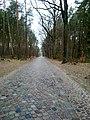 Wanderweg Richtung Summt - panoramio (4).jpg