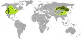 Former (light green) and current (dark green) ranges of Cervus canadensis