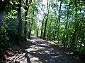 Weg von der Burg in Krautheim in das Jagsttal - panoramio (1).jpg